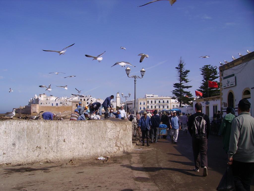Essaouria, Marocco