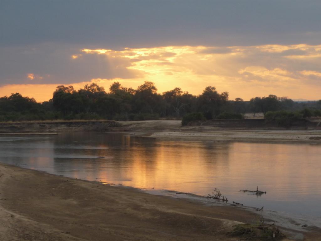 Safari, South Luangwa, Zambia