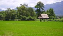 Muang Sing, Laos