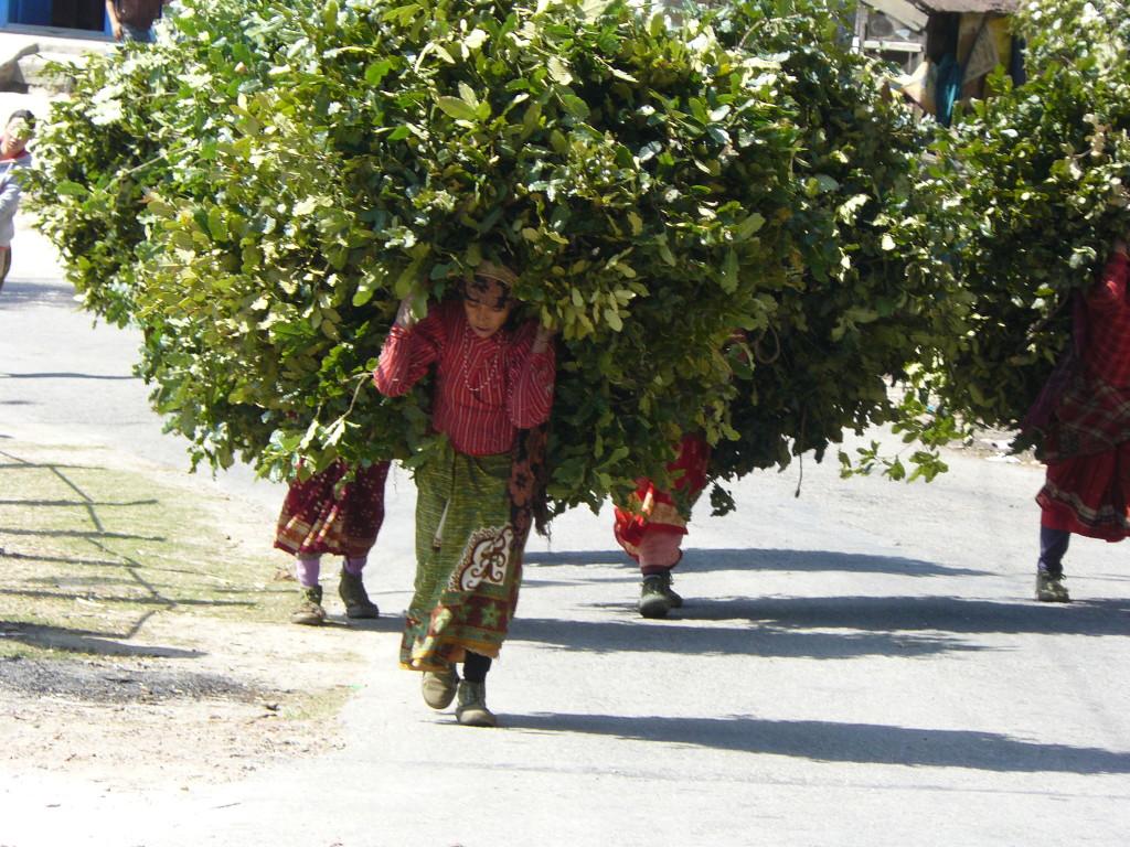 Dakshinkali, Nepal