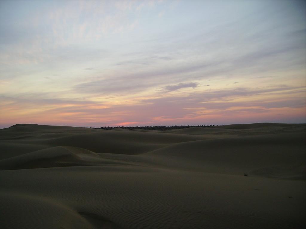 Escursione Cammello, Deserto, Jaisalmer
