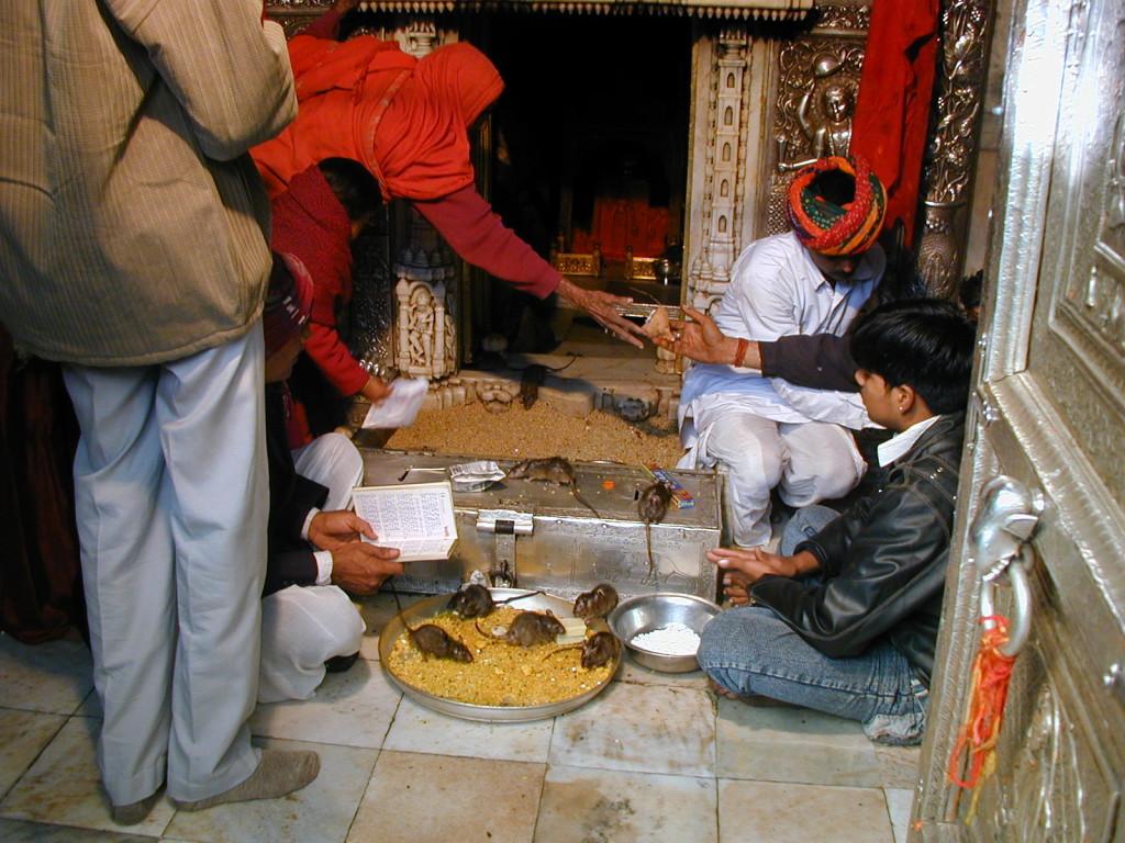 Tempio Topi, Bikaner