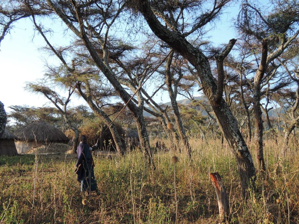 Villaggio Masai, Tanzania