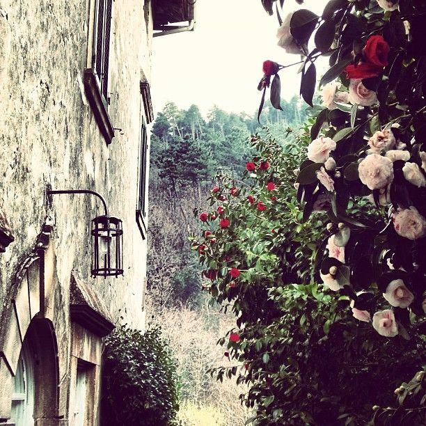 Sant Andrea Compito, Lucca