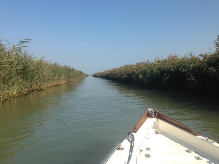 Delta del Po, Pescaturismo