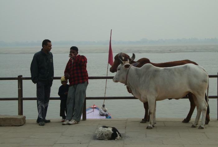 Ghat, Varanasi, Gange
