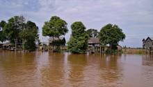 Tonlè Sap, Cambogia