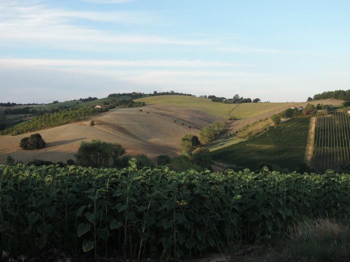 Maremma, Toscana