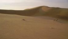 Le dune del deserto del Thar