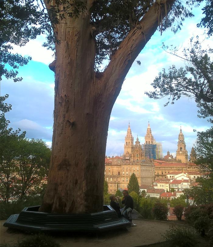 Compostela, Spagna