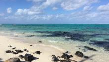 Pointe D'esny, Mauritius